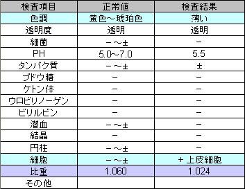 尿検査_2008_Jun16_Q.jpg