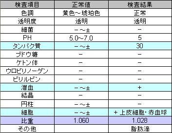 尿検査_2008_Mar25_Q.jpg