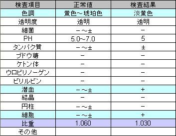 尿検査_2008_May18_Q.jpg