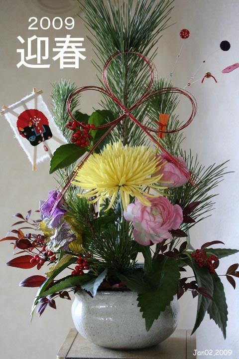Jan02_09_PF0.jpg